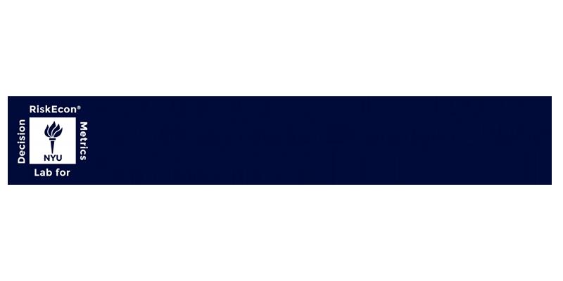 RiskEcon Lab for Decision Metrics logo