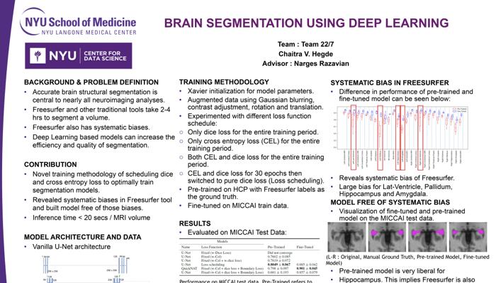 Brain segmentation poster